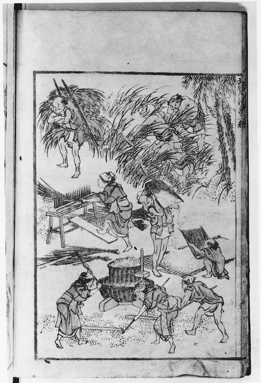 Eine Seite aus den Hokusai Manga: bei der Reisernte. Insgesamt 10 Figuren. 3 Männer schneiden im Reisfeld die Ähren, ein Mann bringt die Büschel auf seiner Rückentrage weg. Eine Frau trennt die Körner von der Pflanze, 3 Bauern dreschen die Reiskörner, zwei Männer sieben sie.
